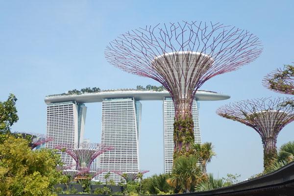 Singapur 3 2015 (5)